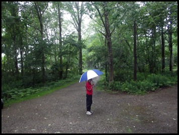 DGB walking in rain 001