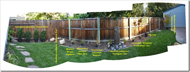 111113_SA_backyard_pano