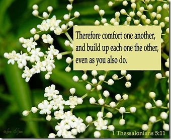 work_7420968_1_flat,550x550,075,f_comfort-one-another-1-thessalonians-5-11