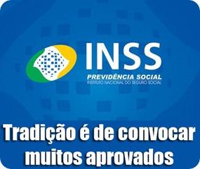 inss2
