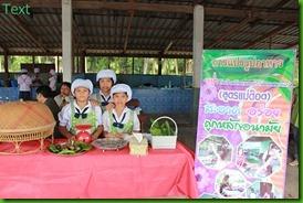 โรงเรียนบ้านหนองตาไก้ตลาดหนองแก50วิชาการ ระดับศูนย์ 2554
