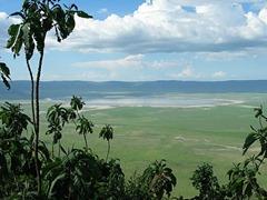 منظر من تنزانيا