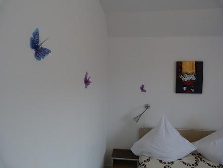 Cazare Mehedinti: Fluturi prin Pensiunea Danubia