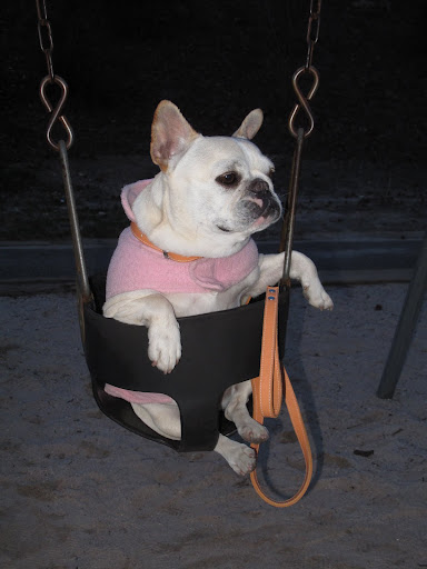These swings are kind of comfy - don't you think, Franny?