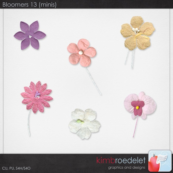 kb-bloomers13-mini