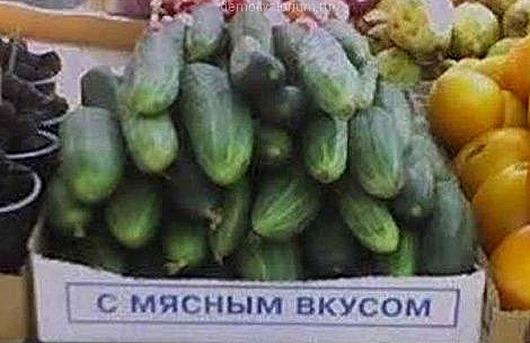 1349840831_novye-demotivatory-27