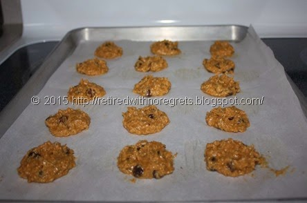 Coconut Chocolate Chip Cookies - ready for oven