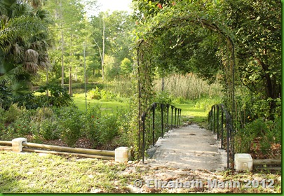 Charmant This Is One Of My Favorite Pictures That Captures An Image Of The Beauty  That Is Within Mead Botanical Garden. It Is A Small Glimpse Into A Secret  Gardenu2026
