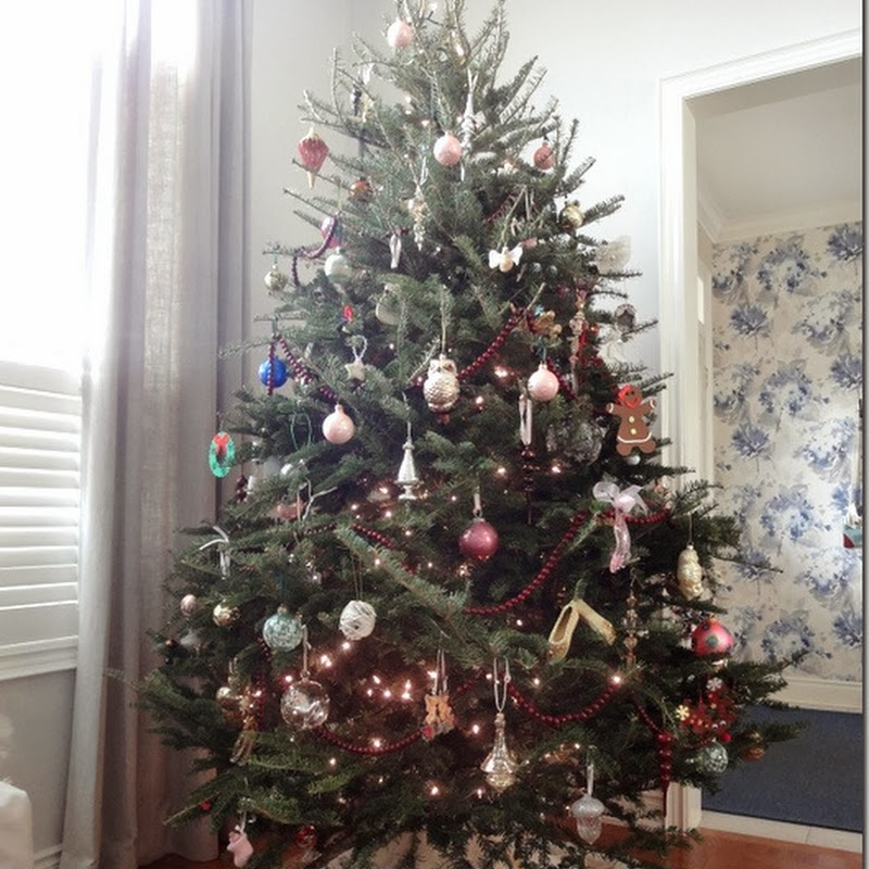 Oh Christmas Tree (2012)