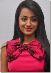 Actress Trisha @ Endrendrum Punnagai Movie Success Meet Stills