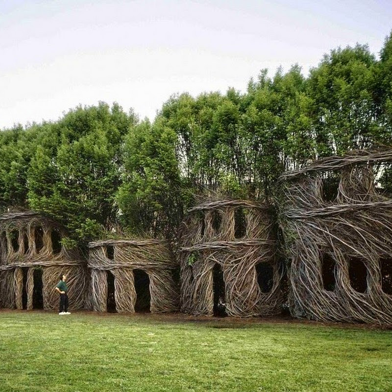 Patrick Dougherty's Twig Sculptures
