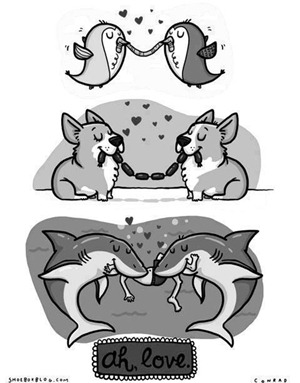 el amor es compartir