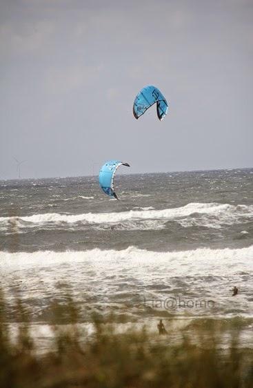 Egmond aan Zee 129 (2)