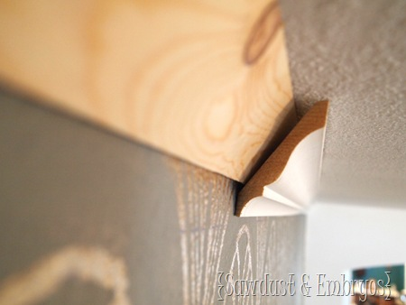 Crown Molding {Sawdust and Embryos}