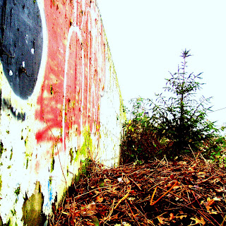 """Guerilla landscaping. """"The agitator seizes the word. The artist is seized by it."""" - Karl Kraus"""