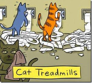 cats-on-treadmills-cartoon