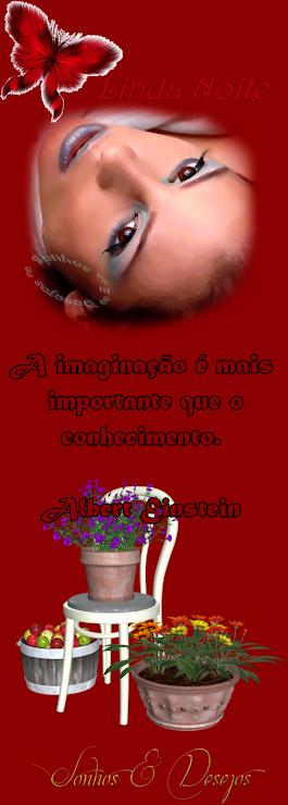Boa noite A imaginação é mais importante que o con