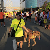Pet Express Doggie Run 2012 Philippines. Jpg (121).JPG