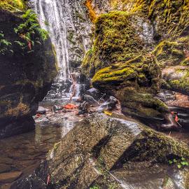 Susan Creek Falls by Becca McKinnon - Instagram & Mobile iPhone ( water, susancreekfalls, susancreek, fallcolor, fall, falls, waterfall, rocks )