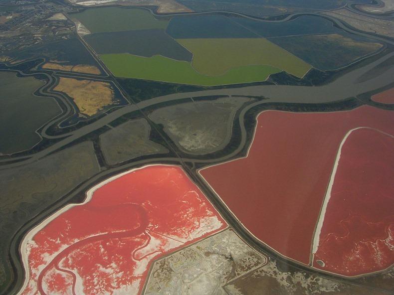 cargill-salt-ponds-3