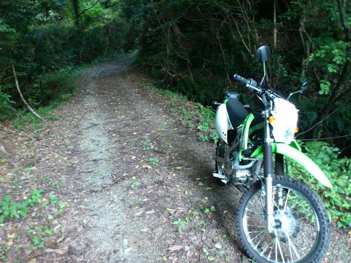 東出雲須田の林道