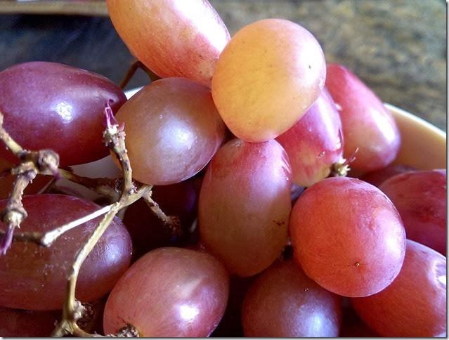grapes-public-domain-pictures-1 (2241)
