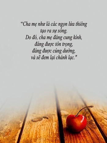 thiep-vu-lan-bao-hieu-cha-me (7)