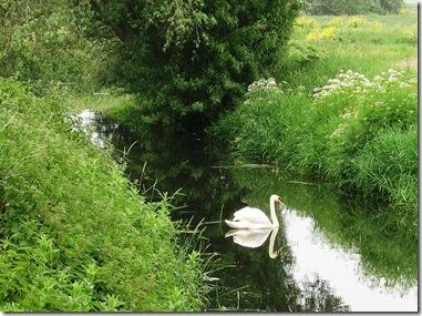 20120530 Shirley Moor Cradlebridge Sewer (15a)