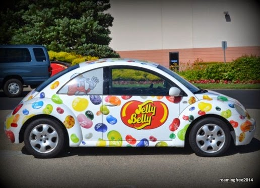 The Jelly Belly Bug