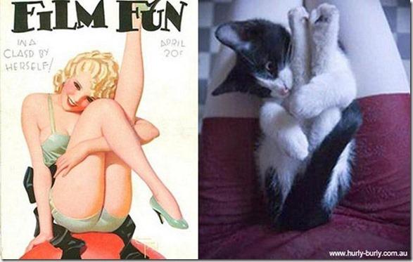 cats-pinup-models-18