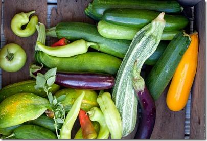 garden-veggies1