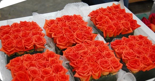 100_1524 mood flowers