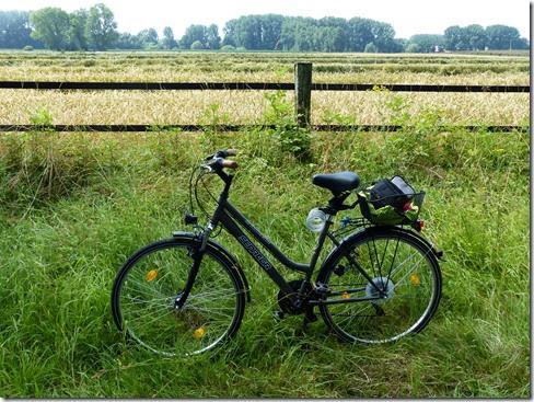 2014_07 Radtour Richtung Herford (5)