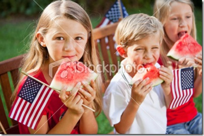 stock-photo-16880267-fourth-of-july-or-memorial-day-picnic