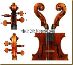 violin peg