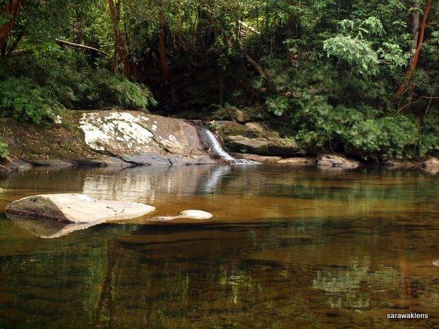 river_in_sarawak_02