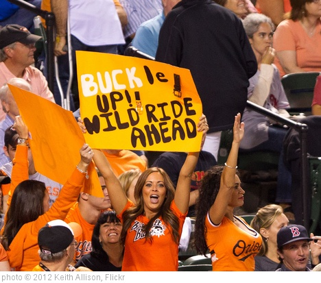 'Baltimore Orioles Fan' photo (c) 2012, Keith Allison - license: http://creativecommons.org/licenses/by-sa/2.0/