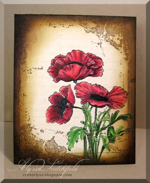 distressed poppies