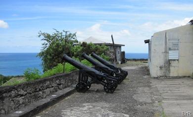 Grenada_St_Georges_Kanonen
