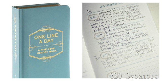 fav things line a day journal