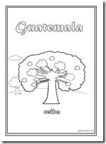 ceiba guatemala 2 1[2]