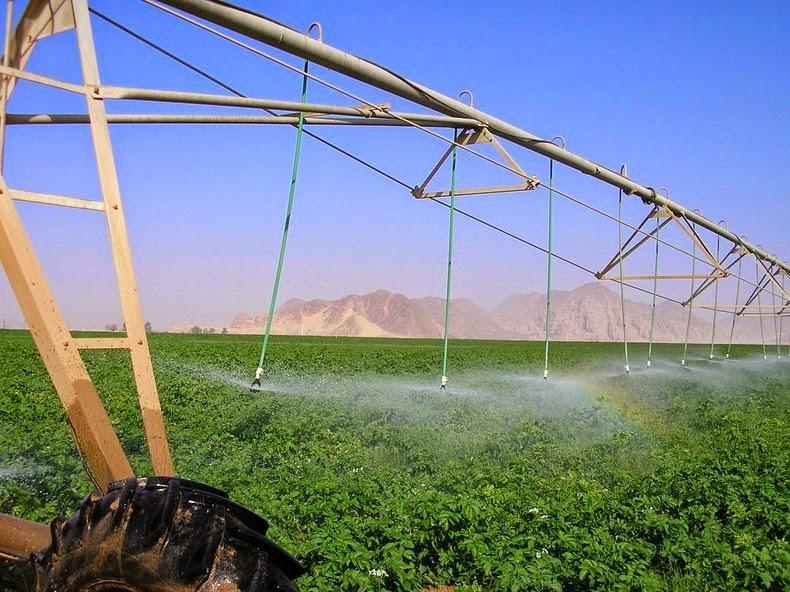 wadi-rum-farming-3