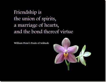 friendship_quote_07