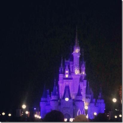2012-12-30 6 magic kingdom2