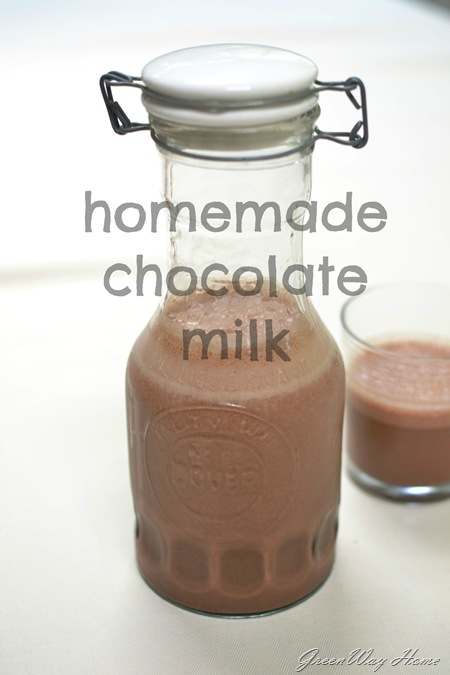 Homemade Chocolate milkV