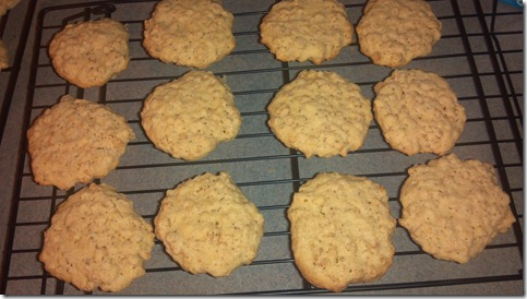 Rice Krispy Cookies (2)