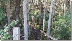 Entering trail from bridge