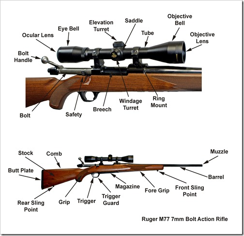 Ruger M77 7mm Rifle Nomenclature