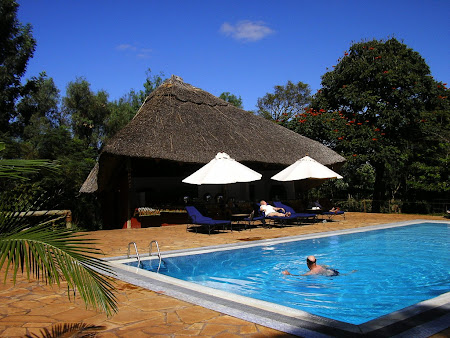 Safari: A Ngorongoro lodge