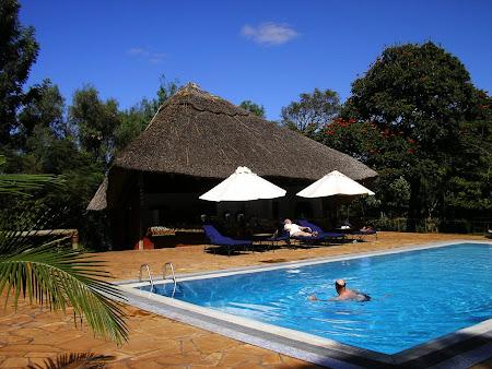 Safari: A Ngorongoro lodge